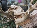 deadwood (15)